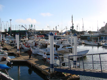 Marina at Ensenada